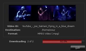Bajando un Video de Joe Satriani