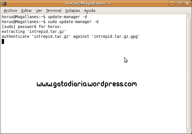 Ubuntu intrepid webcam chat opinion